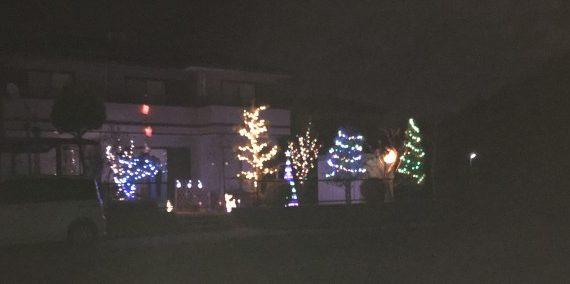 月とクリスマスの飾り