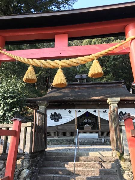 白山神社を訪問する。