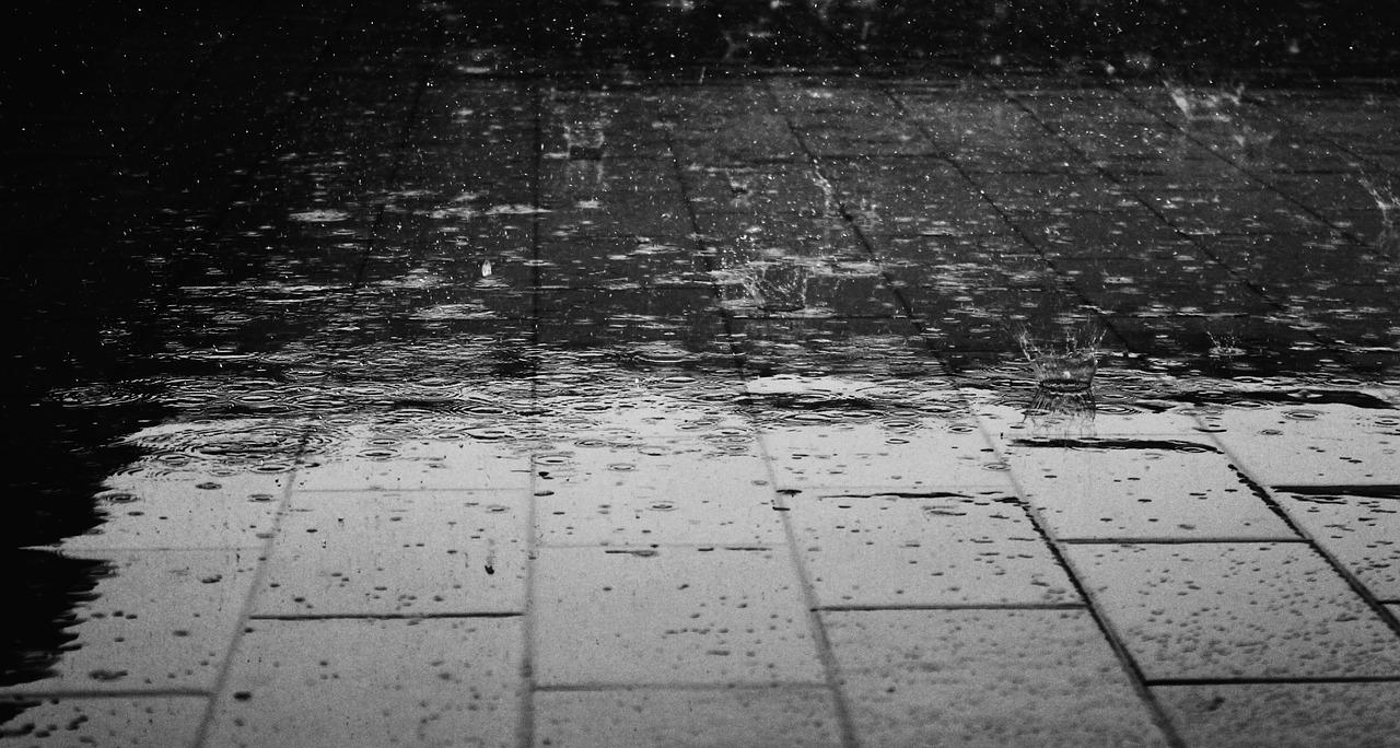 このところ雨が降っている。