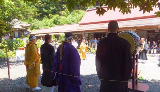 今日は三光寺に行って、アジサイを鑑賞する。