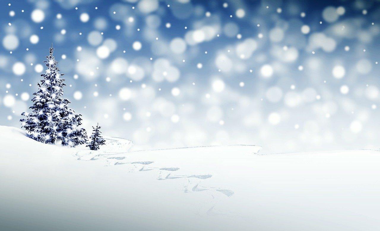 はじめて雪が降った。